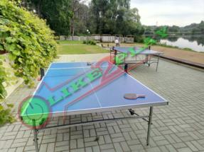 играем в теннис стол профессиональный