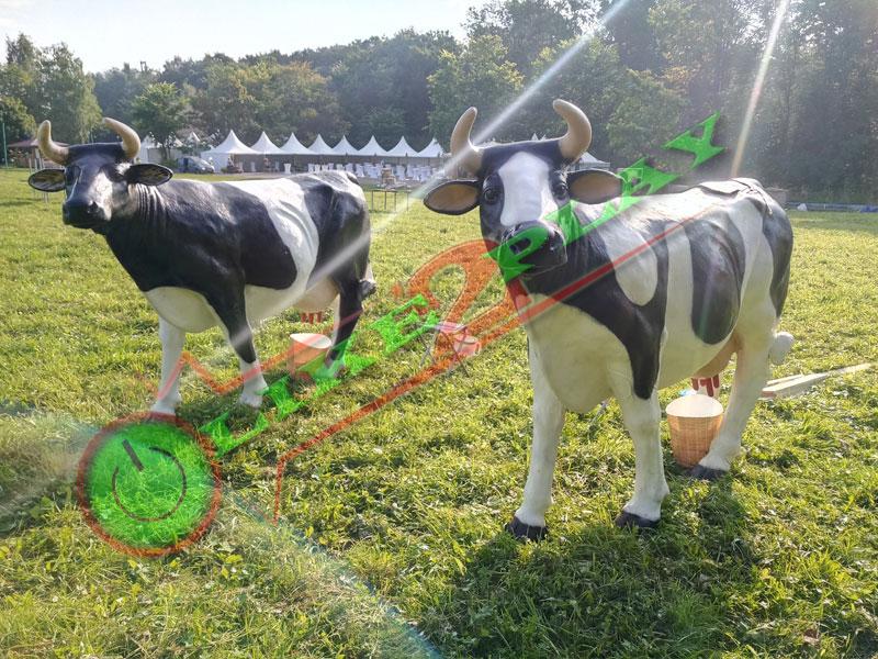 Большая корова, буренка