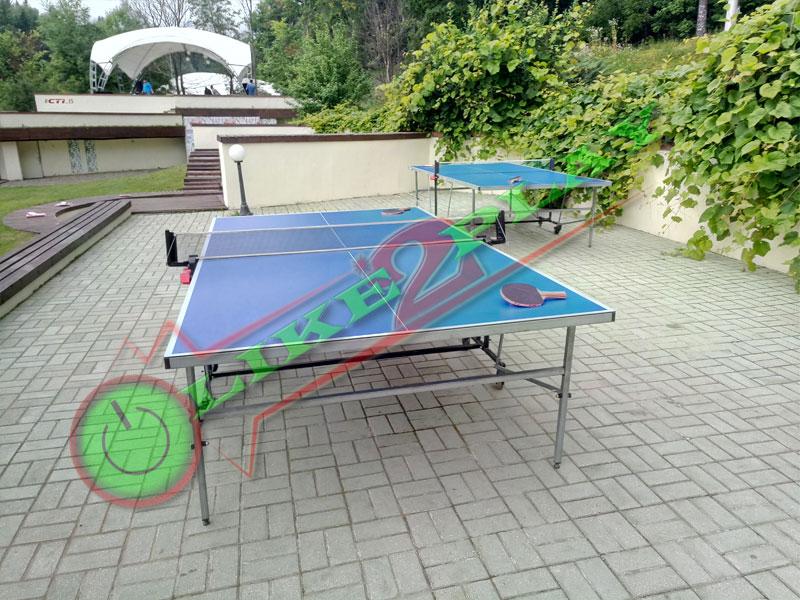 тэнис настольный тенис